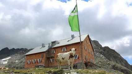 Neue Reichenberger Hütte (2.586m) | Umweltgütesiegel - Übernachtung Ja - OeAV - Foto: neue.reichenbergerhuettegmail.com
