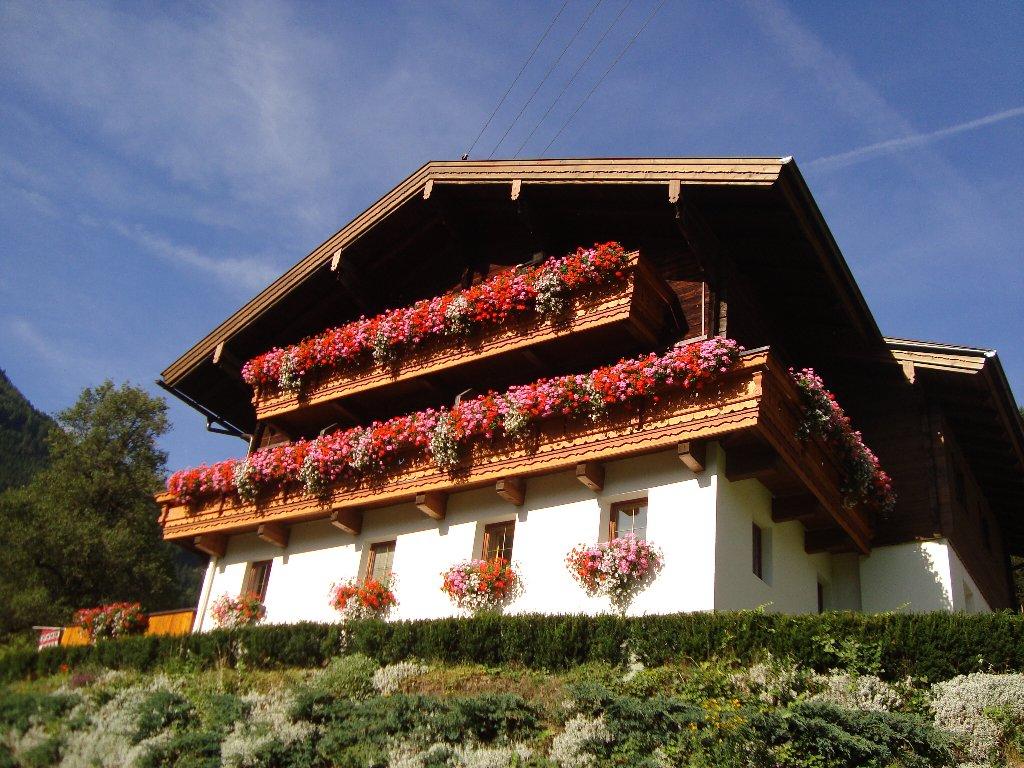 Zöschgenhof - Bauernhof