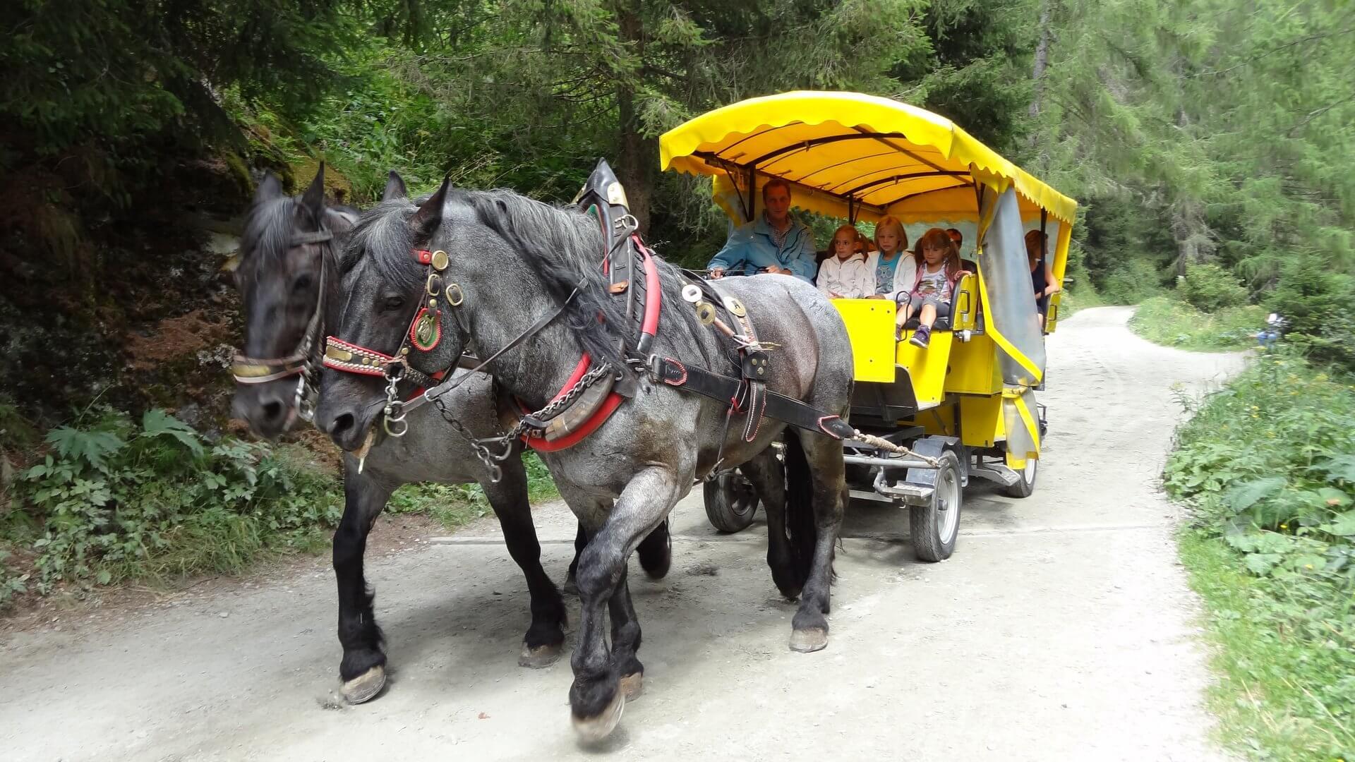 Pferdekutschen ab Parkplatz Ströden bis zum Wegeinstieg Umbalfälle.