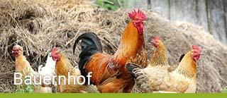 Bauernhofurlaub - Schnell und sicher online buchen
